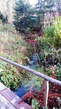 Продам дом в Наро-Фоминском районе для кгруглогодичного продивания - Фото 4