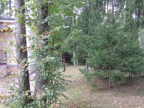 Готовый коттедж с бассейном, Минское ш, 32 км от МКАД, Зелёная Роща-1 - Фото 3