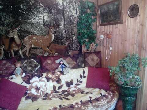 Продам 2-х этажный дом в СНТ «Юбилейный», деревня Пласкинино - Фото 5