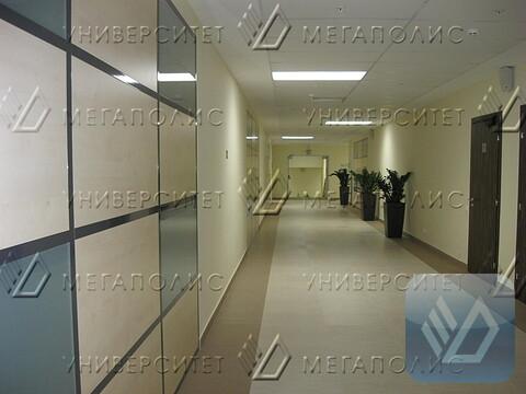 Сдам офис 117 кв.м, бизнес-центр класса B+ «омега – 2» - Фото 4