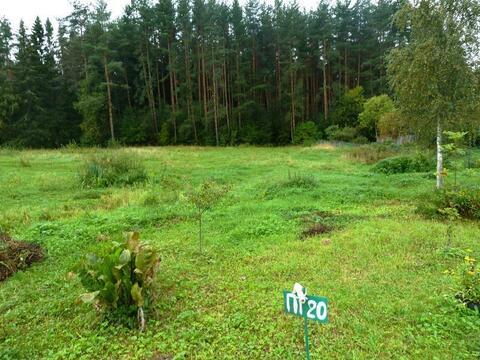 Продается участок 7 соток в поселке Новое-Гришино. - Фото 3
