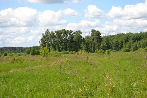 Земля ИЖС по 4.28 за сотку, заповедные места, рядом газофицир.деревня - Фото 2