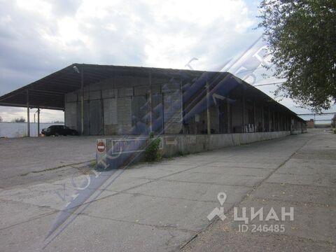 Склад в Астраханская область, Астрахань Сенная ул. (123.2 м), Аренда склада в Астрахани, ID объекта - 900757163 - Фото 1