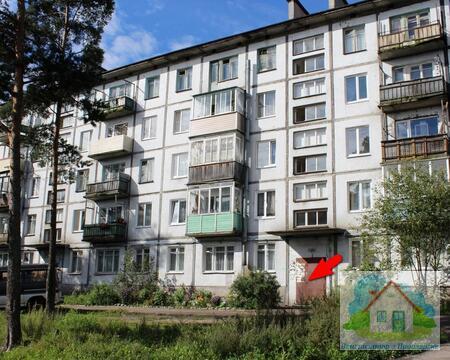 Двухкомнатная квартира в п. Саперное. Шикарные окрестности - Фото 1