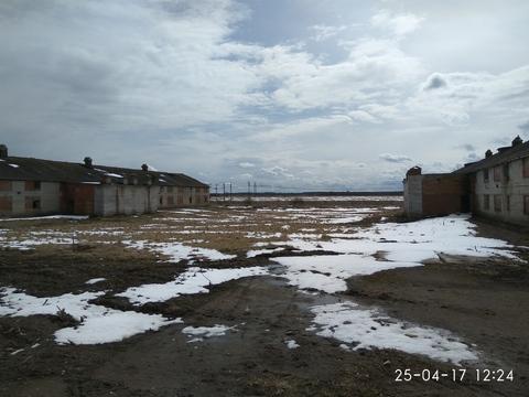 Продажа земельного участка в д. Лаголово, Ломоносовский р-н. - Фото 2