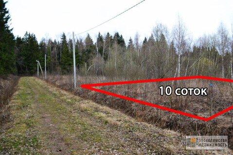 Участок 10 соток (электричка до Москвы в доступности) - Фото 2