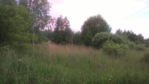 Участок в деревне в 100 метрах от огромного озера. Газ-свет по границе - Фото 2