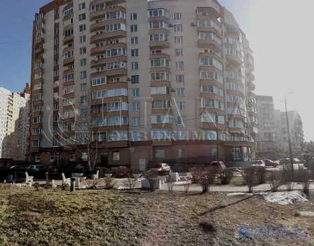 Продажа квартиры, м. Проспект Ветеранов, Дачный пр-кт. - Фото 2