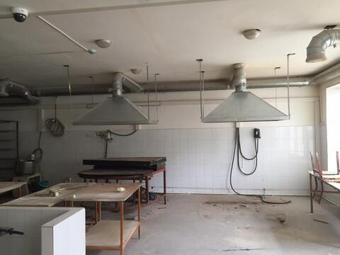 Сдам помещение под пищевое производство на улице Куйбышева - Фото 2