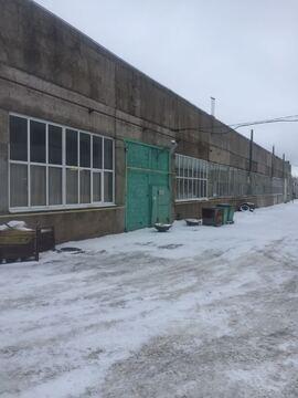 Сдается теплое помещение в д. Кипень, 1000м2 - Фото 3