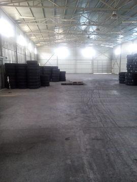Холодный склад 1000 кв.м. в р-не ул. Видова - Фото 1
