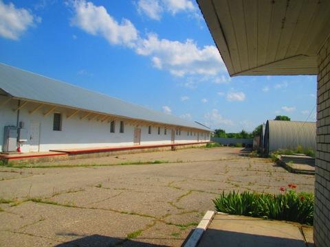 База 65 сот, строения 1699 м2 - Фото 2