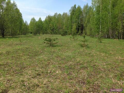 Продажа земельного участка в Валдае под строительство базы отдыха - Фото 1