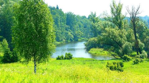 Дом 125км от МКАД по Новорижскому ш. д Лазарево Волоколамского р-на - Фото 1