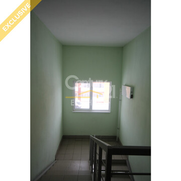 1-к квартира с. Косулино 35 кв м - Фото 3