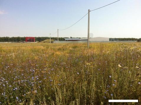 Продается земельный участок, Кулешовка д, 250 сот - Фото 3