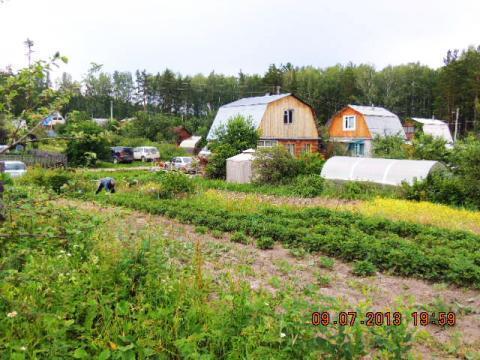 Исток 9 соток сад Оборонснабсбыт продам - Фото 5