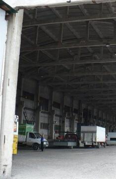 Продам производственное помещение 9000 кв.м, м. Пионерская - Фото 3