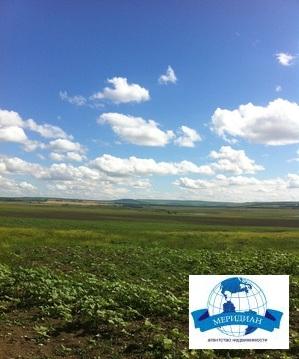 С/хоз. земля с мельницей - Фото 1