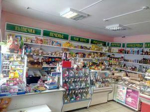 Продажа готового бизнеса, Шелаболихинский район - Фото 2