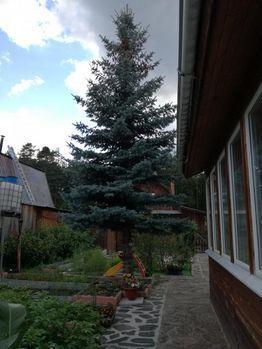 Продажа дома, Екатеринбург, Ленина пр-кт. - Фото 1