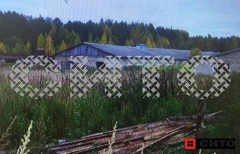 Продажа участка, Маза, Кадуйский район, Череповец - Фото 1