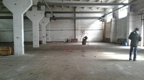 Сдам складское помещение 1390 кв.м, м. Автово - Фото 3