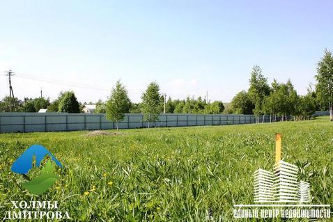 Участок 13.94 га в районе д. Ближнево (г/п Дмитров) - Фото 4