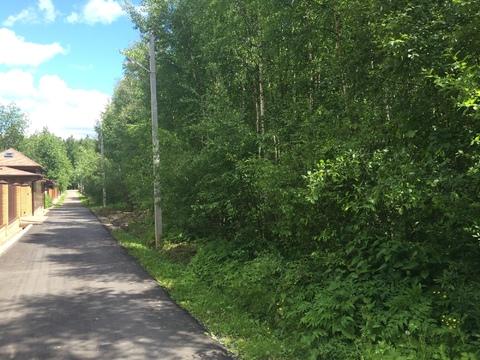 Земельный участок в лесу, 10 соток, Киевское ш, - Фото 3