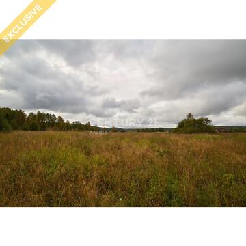 Продажа земельного участка 1,25 Га в д. Гомсельга на 1 береговой линии - Фото 2