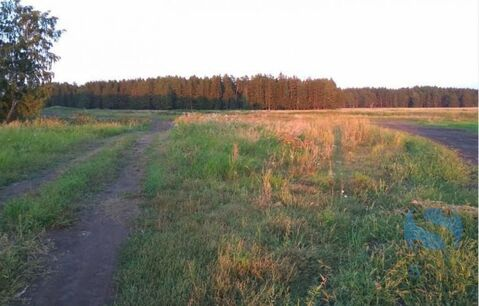 Продажа земельного участка, Успенка, Тюменский район - Фото 2
