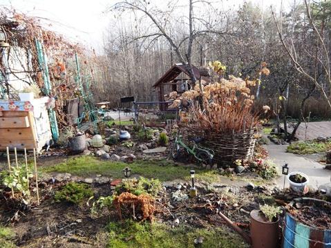 Дача с печкой, баней, дизайном участка - Фото 3