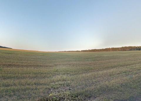Продам: земля 200 сот, 10 км от города - Фото 4