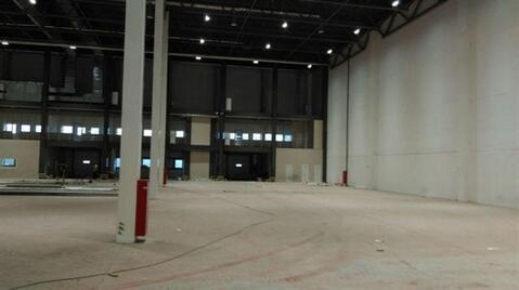 Сдам складское помещение 3000 кв.м, м. Купчино - Фото 3