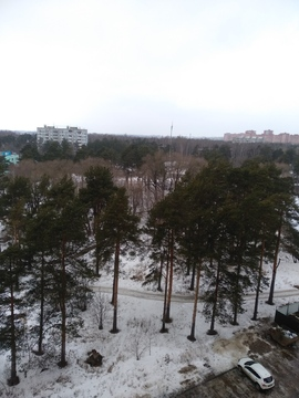 3-комнатная квартира Дмитров, Махалина, 40, собственника, с ремонтом - Фото 4