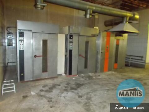 Производственное помещение 500м2 Мытищи - Фото 3