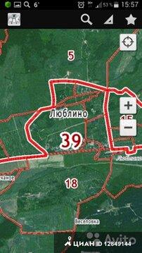 схема снт светлое гурьевского района калининградской области