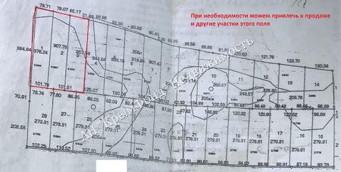 Земельный участок сельхоз назначения, 2,8 Га, с. Вилино - Фото 5