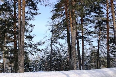 Продажа таунхауса, Казань, За городом (5 км); д.Чернышевка - Фото 5