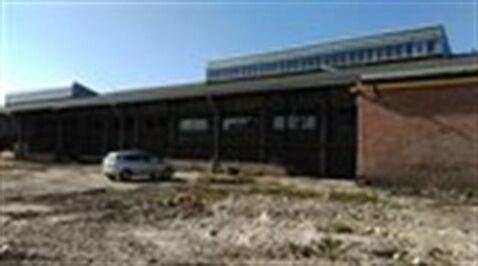 Сдам складское помещение 2000 кв.м, м. Ломоносовская - Фото 1