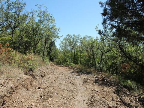 Продам земельный участок 7.5 соток в Алуште - Фото 3