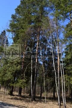Лесной участок 28 сот. - Фото 3