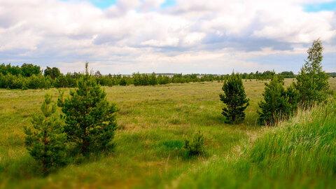Земля с/х назначения в Октябрьском районе, Кочердык, оз. Соленое - Фото 4