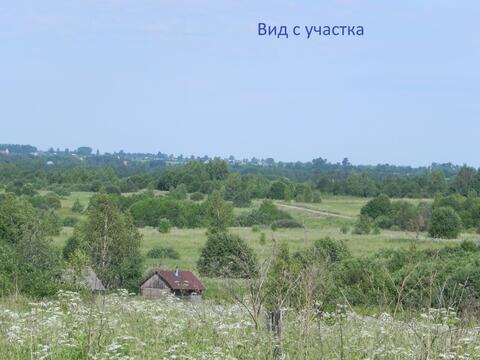 Земельный участок Костромская область на берегу реки Волга - Фото 4