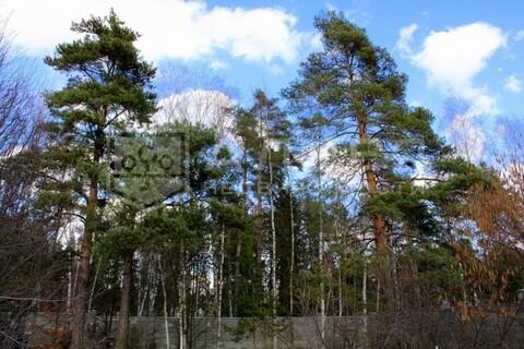 Лесной участок 18 сот. - Фото 1
