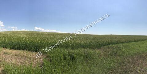 Земельный участок сельхоз назначения, 2,8 Га, с. Вилино - Фото 4