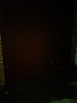Продам гараж Стасовой - Фото 4