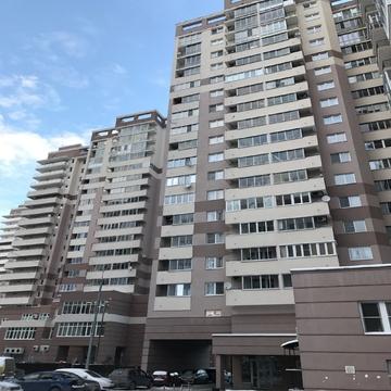 Сдается торгово-офисное помещение 206кв.м, ул. Чугунова, д. 15а - Фото 4