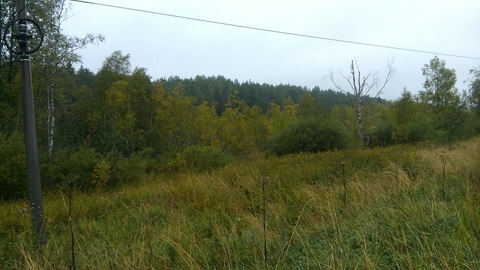 Продам дом в п.Кузнечное(Приозерский р-н) - Фото 2