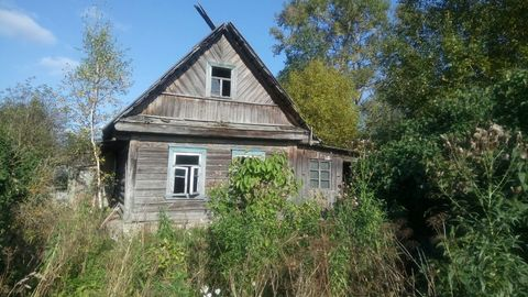 Продается участок 25 соток ИЖС в дер. Алапурская Гатчинского р-на - Фото 1